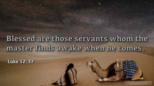 Ye servants of the Lord Each in his office wait