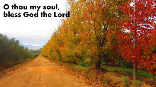 O thou my soul bless God the Lord And
