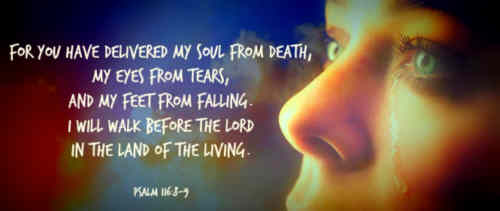 My soul through my Redeemer