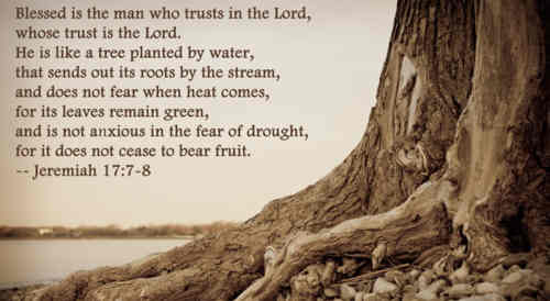Let me be like a fruitful tree Planted