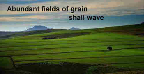 Abundant fields of grain shall wave All ++.